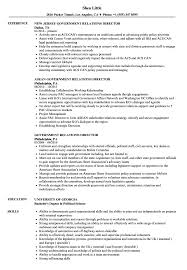 resume exles for government government relations director resume sles velvet