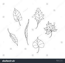 set vector tree leaves stock vector 581298613