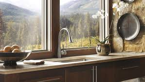 Brizo Vuelo Kitchen Faucet by Venuto Kitchen Brizo