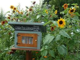Mini Library Ideas 77 Best Mini Library Images On Pinterest Book Shelves Books And