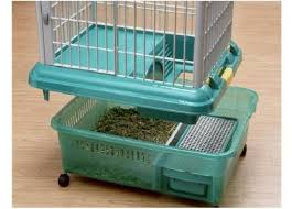 Rabbit Hutch Plastic 30 Best Rabbit Hell Images On Pinterest Rabbit Hutches Rabbit