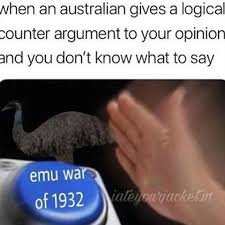 Straya Memes - images about youknowyouraussiewhen on instagram