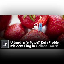 Ewe K Hen Ultrascharfe Makrofotos Erzielen Mit Focus Stacking Und Helicon