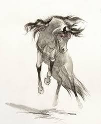 408 horse drawings images horse drawings