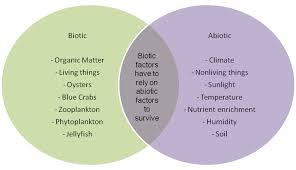 what are some examples of biotic factors in an ecosystem socratic