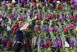royal botanic gardens kew unveils stunning display of 4 500