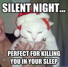 Original Grumpy Cat Meme - silent night the song and grumpy cat original pic grumpy cat