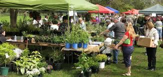 vegetables u2013 rutgers master gardeners of mercer county