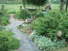 114 best herb garden images on pinterest herb garden garden