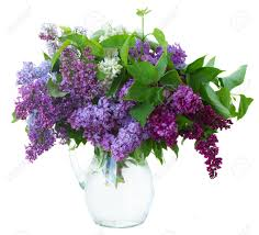 Flowers Glass Vase Bunch Of Fresh Lilac Flowers In Glass Vase Close Up Isolated