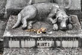 dog grave markers grave markers for pets lovetoknow