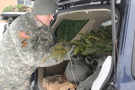 trees for troops brings holiday cheer to fort drum soldiers