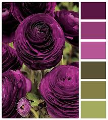 best 25 purple color schemes ideas on pinterest color swatches
