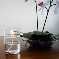 Amazon Com Firefly Clean Lamp Oil 1 Gallon Smokeless Amazon Com Our Firefly Zen Refillable Aromatherapy Oil Lamp Burns