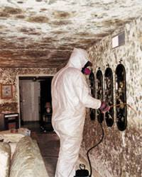 Black Mould In Bathroom Dangerous Toxic Housing Republic Of Lakotah U2013 Mitakuye Oyasin