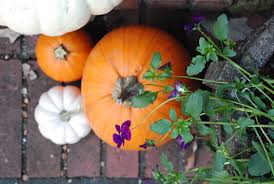 Fall Decorating Ideas For Front Porch - fall decorating ideas a quick front porch makeover the home depot
