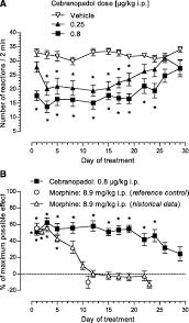 cebranopadol a novel potent analgesic nociceptin orphanin fq