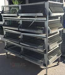 gabbia per pulcini batteria per pulcini polletti galline faraoni fggiani quaglie