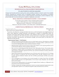 Resume Templates It Professional Professional Director Of Finance Resume Example Template
