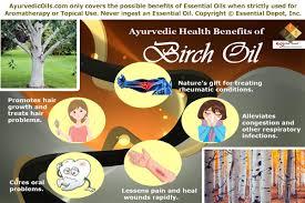 health benefits of birch essential oil ayurvedic oils