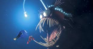 finding nemo u0027 seadevil fish is real aol features