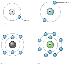 elements and atoms the building blocks of matter anatomy and