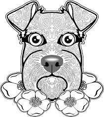 738 coloring pages images coloring books