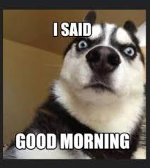 Good Morning Sunshine Meme - 100 funny good morning memes memes of good morning