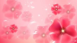 girly computer wallpapers light pink wallpapers hd pixelstalk net