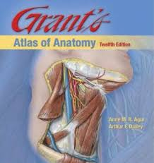 Human Anatomy Pdf Books Free Download Download Snell Clinical Anatomy Pdf