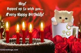 tag for cute cat photos having birthday wishes happy birthday to