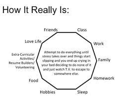 I Like Food And Sleep Meme - good grades social life enough sleep choose two one twenty seven