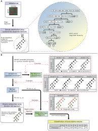multi study integration of brain cancer transcriptomes reveals