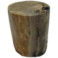 polished round petrified wood stool u2013 organic findings