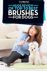 26 best best dog brushes images on pinterest brushes best dogs