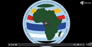 chambre de commerce 06 info vidéo mr victorin sambieni président de la chambre du commerce