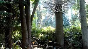 Botanical Gardens Ubc by Ubc Botanical Gardens Greenheart Canopy Walkway Youtube