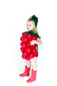 Strawberry Halloween Costume Baby Raspberry Halloween Costume Yessay