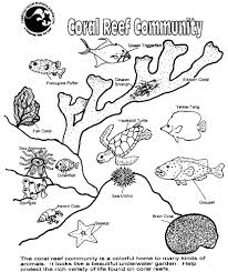 coral reef coloring page how to draw coral coral reef coloring