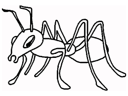 ant coloring page ant cartoon and printable ants coloring pages