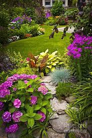 best 25 tropical backyard landscaping ideas on pinterest pool