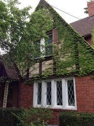 berger paints colour shades exterior house paint ideas color combinations dulux brick before