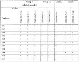 patent ep1804571a2 pmmov resistant capsicum plants google