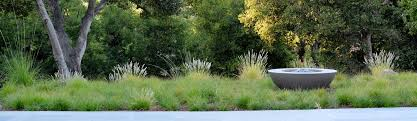 green patio landscape design los altos ca us 94022