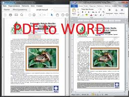 Pdf To Word Silverlight Convert Pdf File To Word File In C Step By Step