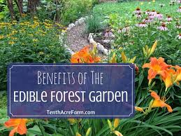 benefits of the edible forest garden tenth acre farm