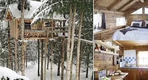 treehouse home plans stunning livable tree house plans new home plans design