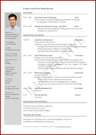 curriculum vitae exles for students pdf files curriculum vitae sle pdf file international resume format doc