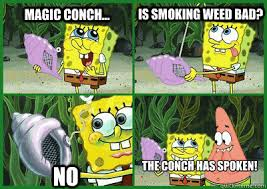 The Conch Has Spoken Meme - magic conch will i ever hit the frontpage maybe ohh magic