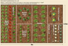 Companion Gardening Layout Companion Gardening Layout Gardens Layout For Vegetable Garden